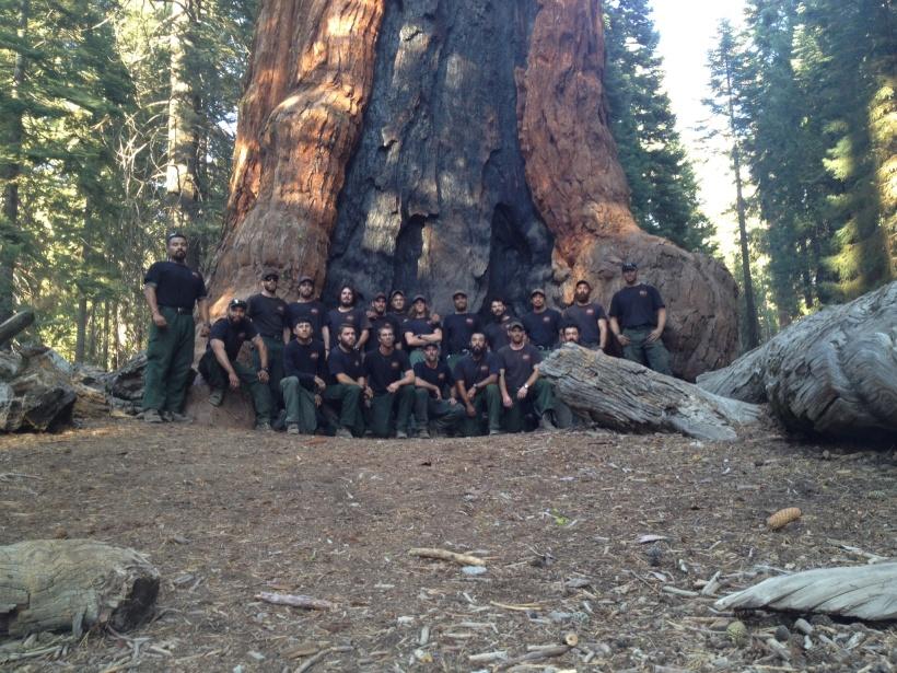 Crew Sequoia